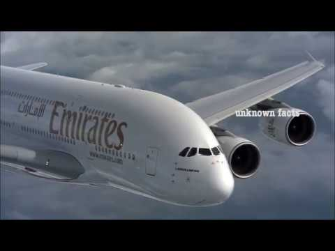 How Emirates food made?  Behind the scenes at Emirates Catering facilities.