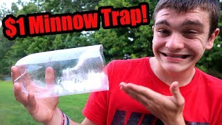 $1 HOMEMADE MINNOW TRAP (Cheap & Easy) - Does it work?