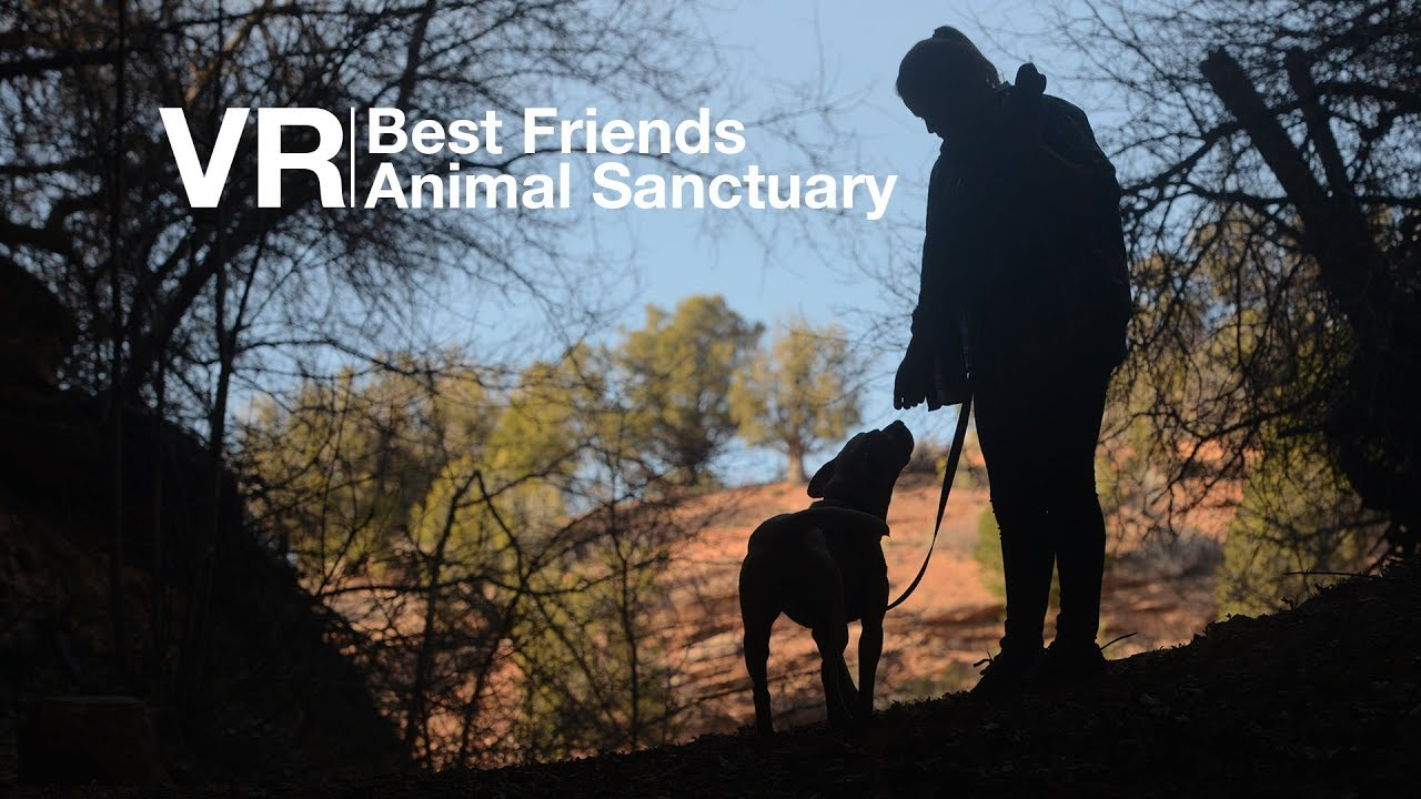 Experience Best Friends Animal Sanctuary in 360/VR