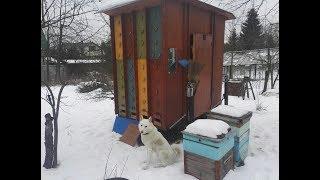 Дверцы с ПЭТ пленкой и сеткой. Облет. Подкормка канди. Результаты зимовки. Кассетные павильоны