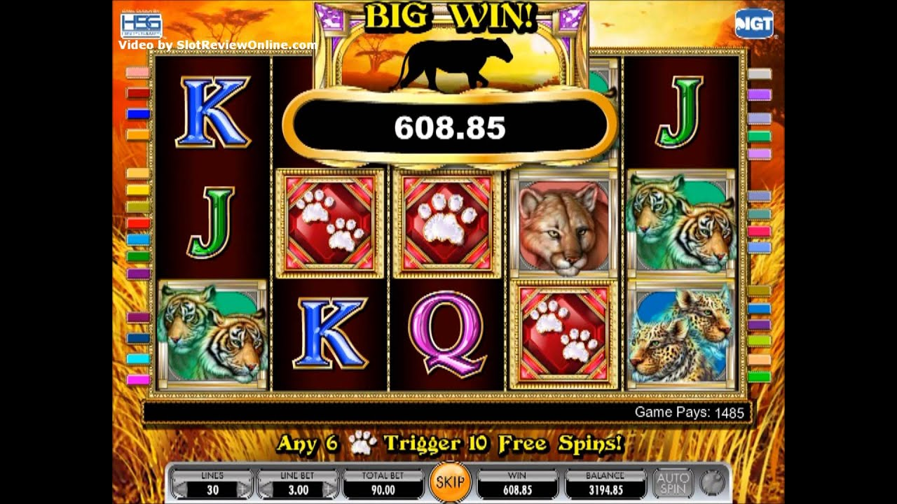 play free casino video slots games