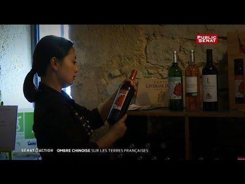 Ombre chinoise sur les terres françaises : Sénat en action (01/07/2016