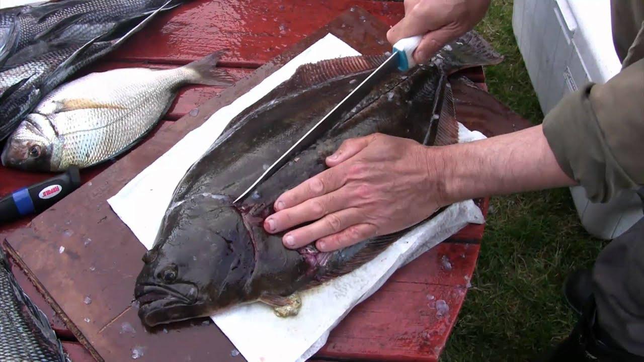 What Does Flounder Taste Like