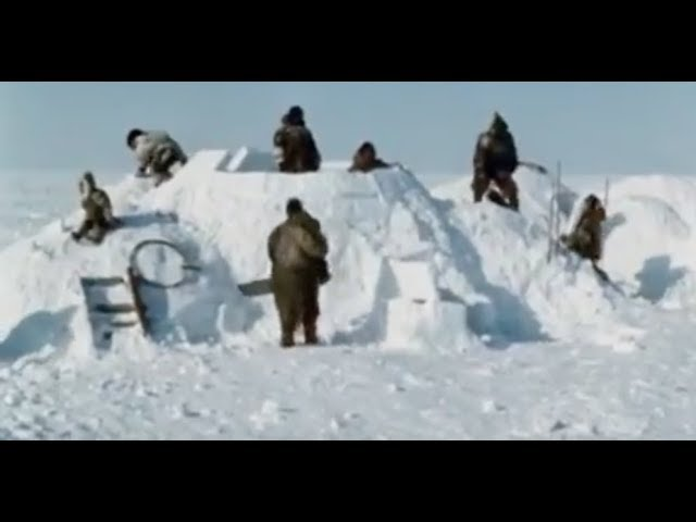 Tuktu- 4- The Snow Palace (How to build a REAL Inuit igloo) #1