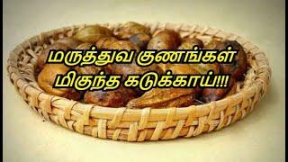 Benefits Of Kadukkai in Tamil | Uses Of Kadukkai | Haritaki Powder | Healthy Life - Tamil.