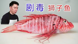 Try to eat a highly poisonous lionfish, it is said that the toxin can kill a shark