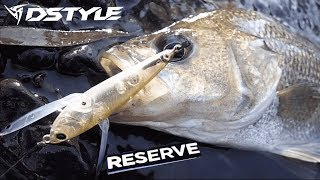 DSTYLE RESERVE FISHING FOR BASS IN SMALL CREEKS.