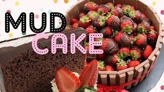 Ultimate Chocolate Mud Cake Recipe! The BEST Chocolate Cake Recipe there is!