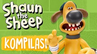 Shaun the Sheep | Full Episodes Compilation 5-8 | Season 5 | Funny Cartoons For Kids