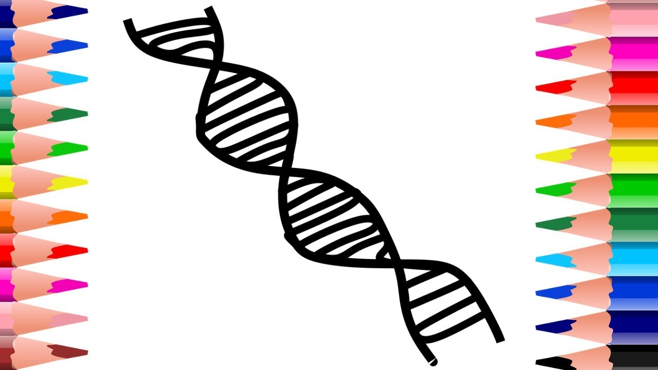 This is a photo of Peaceful Drawing Of Dna