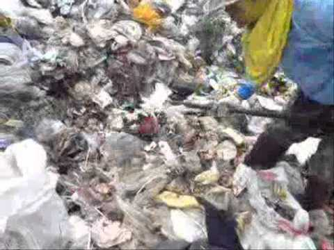 Environmental Health Problem: Solid Waste Management (in Thailand)