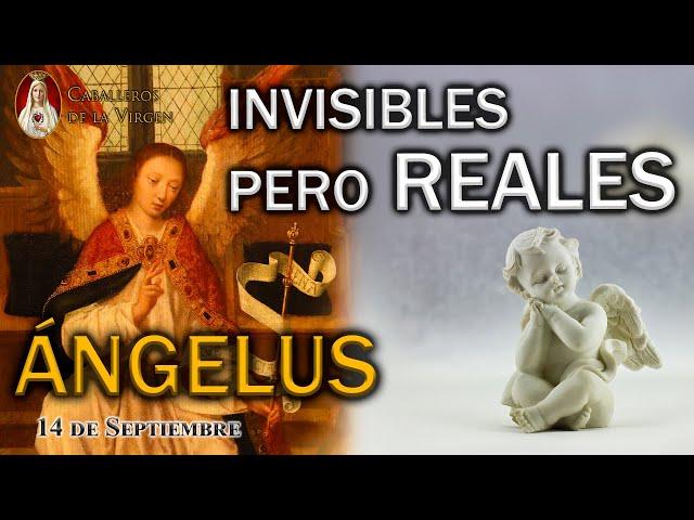 ÁNGELUS 14 de septiembre. Invisibles pero reales.