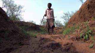 Дикая Африка  Опасные животные  Убийцы  Документальный фильм Discovery  Серия 2