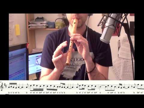 Gabriel's Oboe, The Mission - Recorder (flute) Cover - @carlosrpmusica