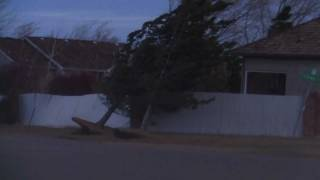 80mph High Winds blowing down trees and fences in SW Littleton Colorado