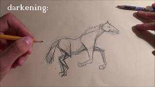 How to Draw a Perfect Horse + Smart Tips