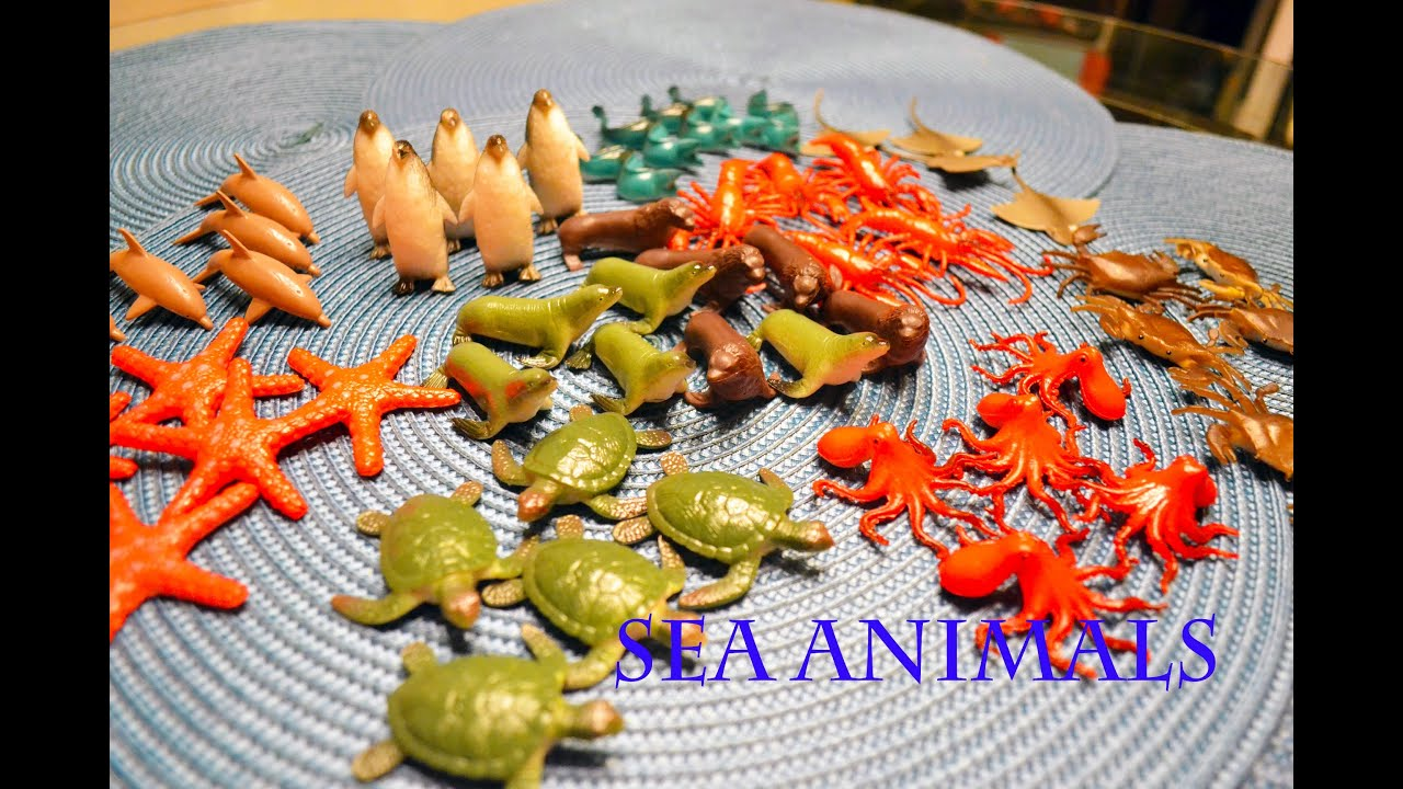 Sea Creature Toys : Unboxing new toys sea animals play set youtube