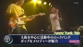 Funny Funk Fish musicるTV@KANSAI