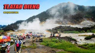 Gambar cover TLATAH DIENG BANJARNEGARA ~ Dedy Pitak # Wisata Alam Pegunungan & Seni Budaya [Official Music Video]