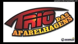 ARROCHA - TRIO DAS APARELHAGENS - MENTIRA (ESTAMPADA NA CARA)