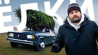 Ёлка против здравого смысла: как НЕ НАДО перевозить деревья на машине