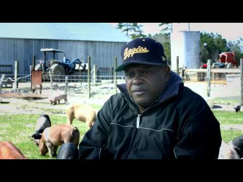 Donnie & Alease Williams (D&A Farms), NC A&T Small Farmer of the Year 2016