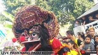 Download lagu SAMBOYO PUTRO FULL Rak Singo Barong Live PAMENANG PAGU MP3