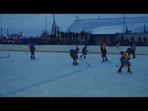 VI первенство Омской области по хоккею среди дворовых команд «Омские орлята»