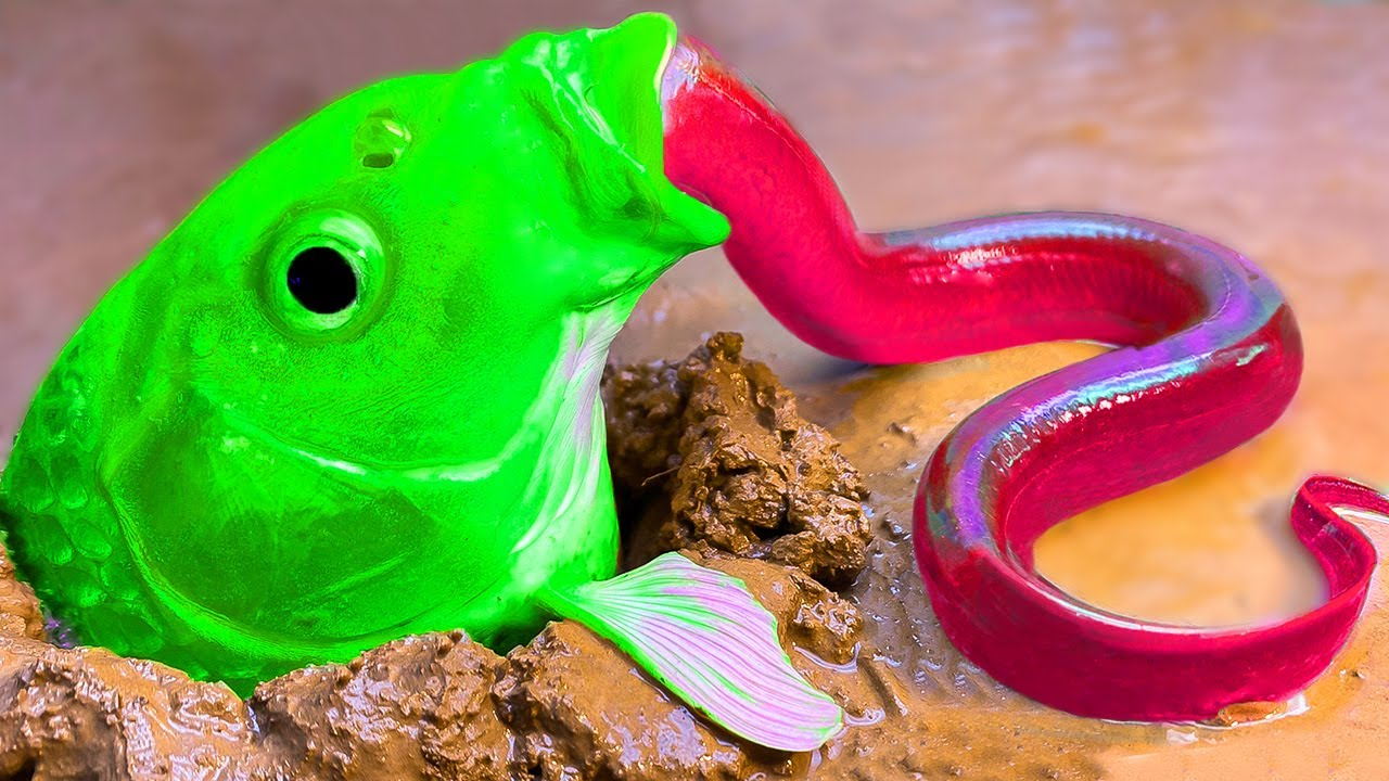 Green Fish Hunting Red eel   Underground Colorful Fish Paper Experiment   Stop Motion ASMR Cooking