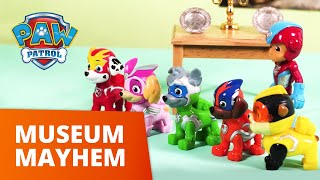 PAW Patrol | Museum Mayhem | Mighty Pups Toy Episode | PAW Patrol Official & Friends