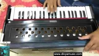 Learn Singing Hindustani classical Light vocal Hindi lessons online videos Indian Guru Teachers mp4