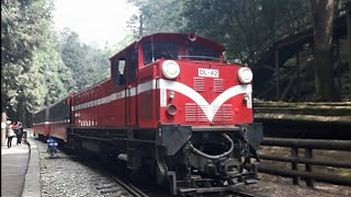 阿里山!!森鐵阿里山、沼平、神木站列車紀錄