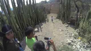 Caleidoscopio Tamaulipas