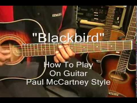 Opinion paul blackbird youtube suggest