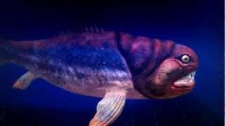 古代の海Ⅱ3D Digifish ancien ocean .