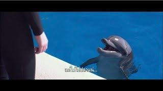 [Official Trailer ซับไทย] Bernie the Dolphin เบอร์นี่ โลมาน้อย หัวใจมหาสมุทร