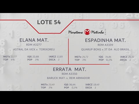 LOTE 54 Maratona Matinha