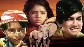Bahadur Bachhe Full Movie | Hindi Kids Movie | Children's Hindi Movie