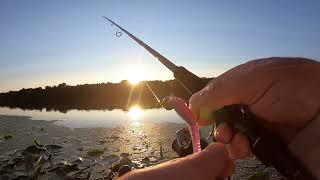 Рыбалка на Оке Джиг с берега Обрыбил новый спиннинг Major Craft Soul Stick STS 862M