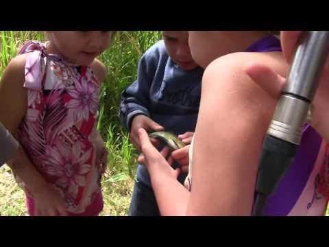 Toronto Aboriginal Eco Tours Goes Fishing with Fisher-kids! (CBC Radio)