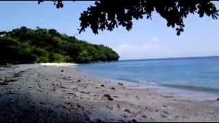 Pure Shores San Remegio Beach Samal Island Davao City
