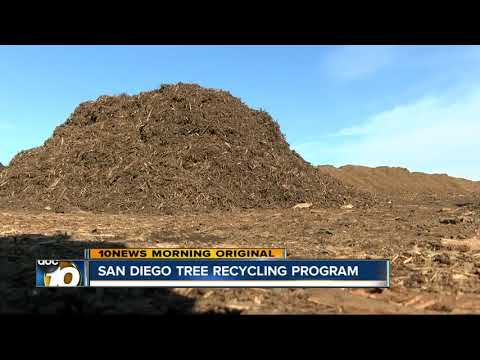 San Diego offers dozens of drop-off spots for Christmas Tree recycling