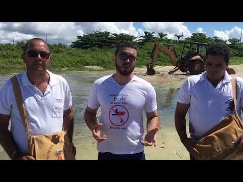 ILHÉUS: Após a repercussão nas redes sociais, SESAU e SESURB agem em foco de mosquito na Av. Soares Lopes 6