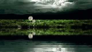 """Одиночество. (из кф """"Черный ворон. исп Полина Бахаревская )"""