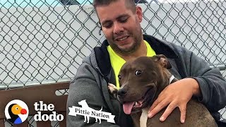 guy-drives-2-800-miles-to-rescue-a-pit-bull-the-dodo-pittie-nation
