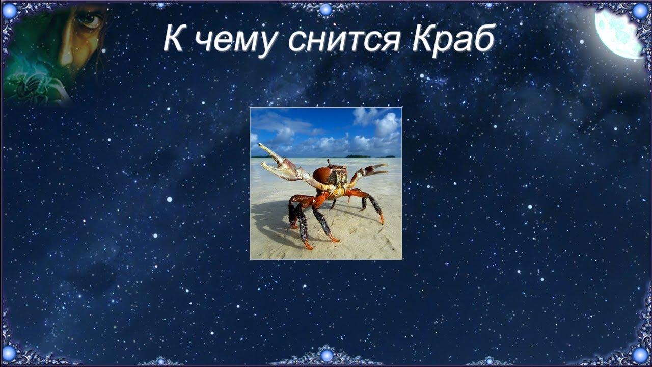 К чему снится Краб (Сонник)