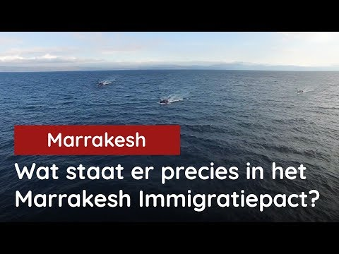 Wat staat er precies in het Marrakesh Immigratiepact?