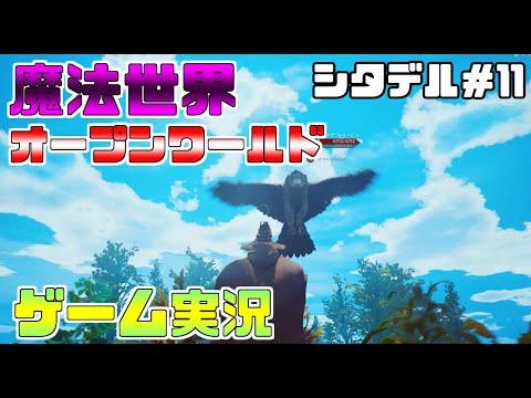 シタデル PS4 永炎の魔法と古の城塞 ゲーム実況#11 PvP