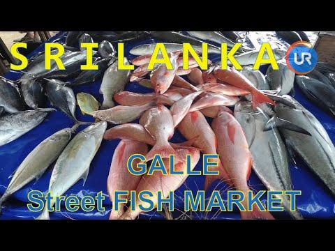 🇱🇰SRI LANKA🐟Amazing Street Sea Fish Food In GALLE