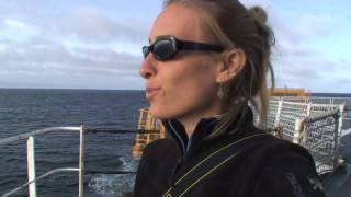 Bering Sea Ice Expedition: Adventures at Sea